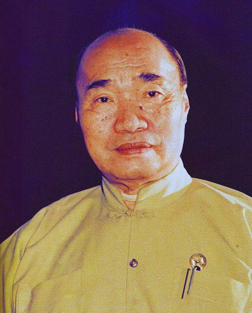 huang sheng shyan tai chi lyon